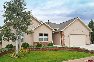 Montrose Single Family Home Back on Market: 3812 Lone Tree