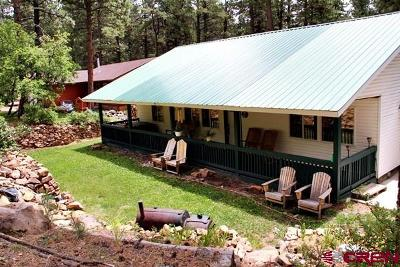 Bayfield Single Family Home For Sale: 92 E Pine Top