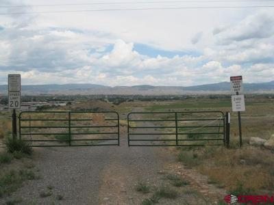 Montrose Residential Lots & Land For Sale: 2401 6485