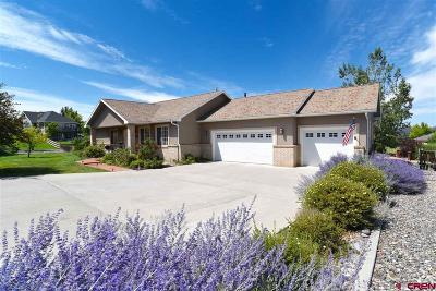 Montrose Single Family Home For Sale: 2286 West