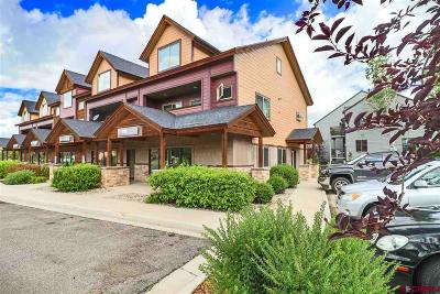 Pagosa Springs Condo/Townhouse For Sale: 191 Talisman #205