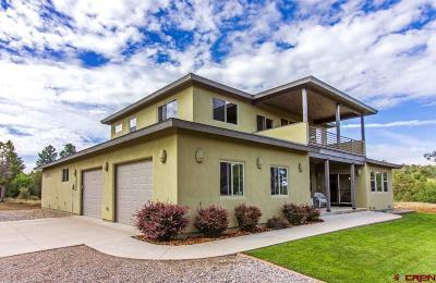 Durango Single Family Home For Sale: 557 Valle Escondido