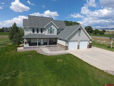 Montrose Single Family Home For Sale: 1101 Rossehl
