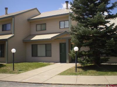 Pagosa Springs Condo/Townhouse For Sale: 284 Talisman #2