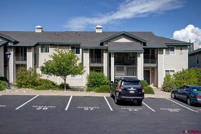 Durango Condo/Townhouse For Sale: 1100 Geoglein Gulch #207