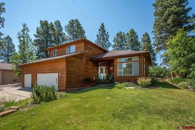Durango Single Family Home For Sale: 84 Michael Way