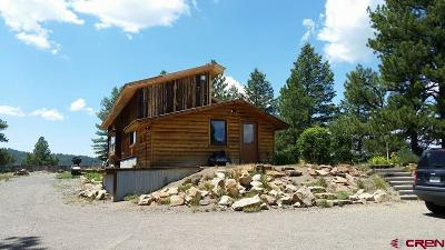 Pagosa Springs Single Family Home For Sale: 235 Ghost Elk