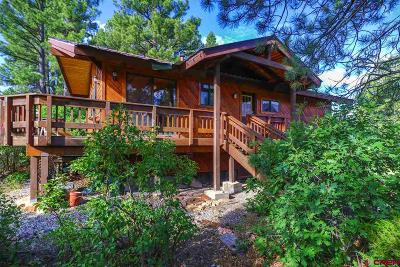 Pagosa Springs Single Family Home For Sale: 6 Glenwood