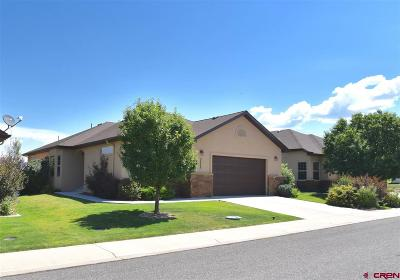 Montrose Single Family Home For Sale: 3733 Mount Hayden