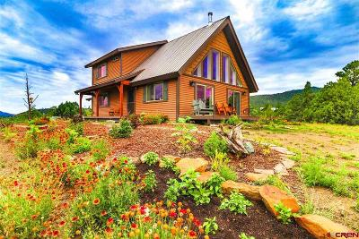 Pagosa Springs Single Family Home For Sale: 1040 Lodge Pole