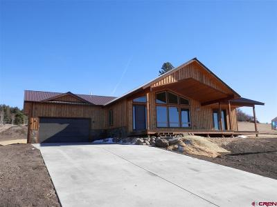 Pagosa Springs Single Family Home For Sale: 233 Incline Circle