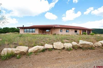 Hesperus Single Family Home For Sale: 1617 Cougar