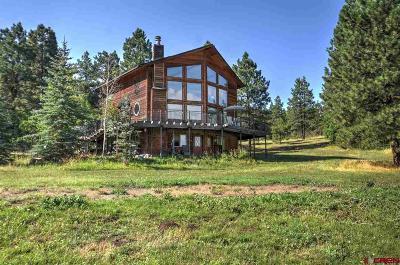 Durango Multi Family Home For Sale: 296 North