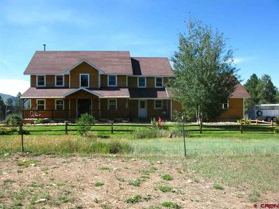 Mancos Single Family Home For Sale: 11755 Road 42
