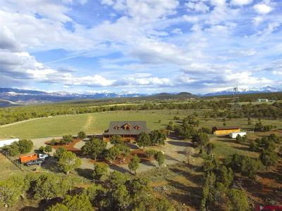 Ouray County Single Family Home For Sale: 378 Weahgatay Road