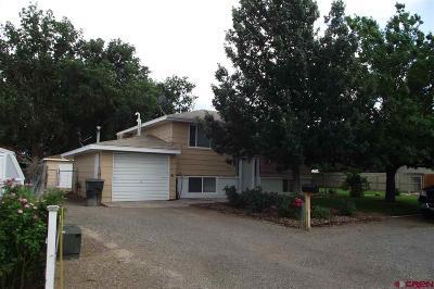 Delta County Single Family Home For Sale: 820 Jensen