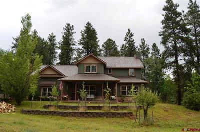Durango Single Family Home For Sale: 6072 Cr 240
