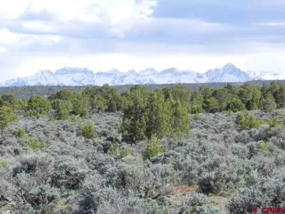 Montrose Residential Lots & Land For Sale: Happy Canyon