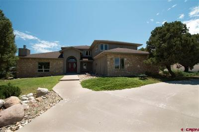 Mancos Single Family Home For Sale: 36250 Hwy 160 Highway