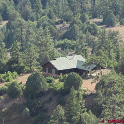 Pagosa Springs Single Family Home For Sale: 201 Alcazar