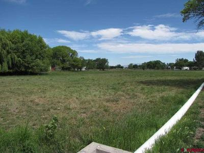 Montrose Residential Lots & Land For Sale: Spring Creek