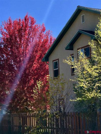 Durango Single Family Home For Sale: 3012 E 3rd