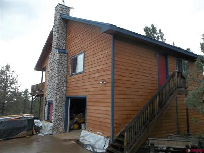 Pagosa Springs Single Family Home For Sale: 171 Point Rock