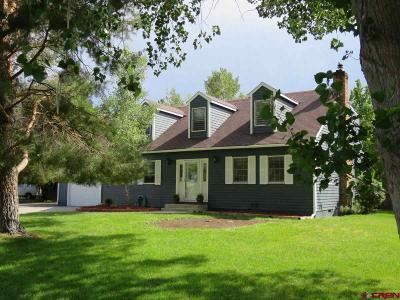 Montrose Single Family Home For Sale: 66124 Juniper