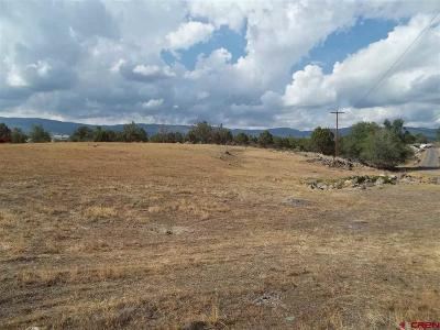 Cedaredge Residential Lots & Land For Sale: NW Cedar