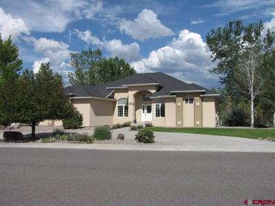 Montrose Single Family Home For Sale: 66333 Crestview