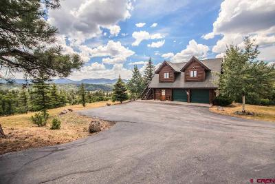 Pagosa Springs Single Family Home For Sale: 2613 Running Horse