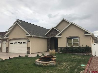 Montrose Single Family Home For Sale: 2224 American
