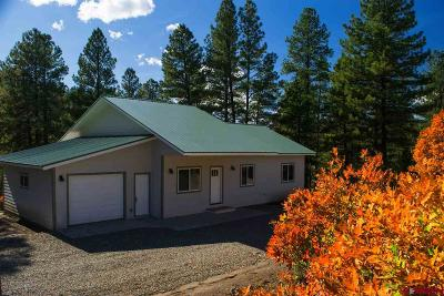 Pagosa Springs Single Family Home For Sale: 44 Haystack