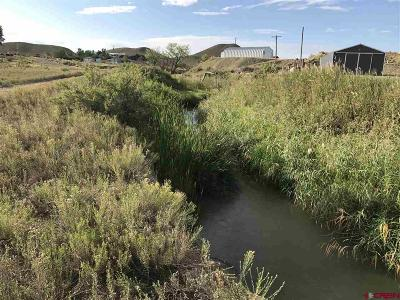 Montrose Residential Lots & Land For Sale: 66208 Landfill