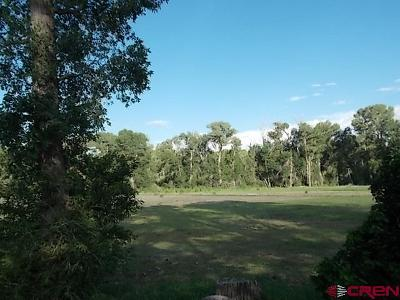 South Fork Residential Lots & Land For Sale: 1862 River Island Dr.