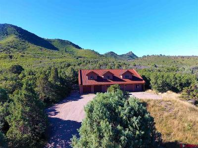 Durango Single Family Home For Sale: 783 Horse Gulch Loop
