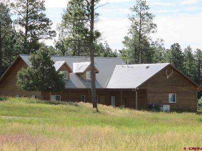 Mancos Single Family Home For Sale: 12850 Road 40.4