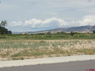 Montrose Residential Lots & Land For Sale: 1516 American Way