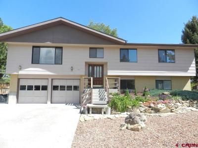 Montrose Single Family Home For Sale: 1413 Leeds