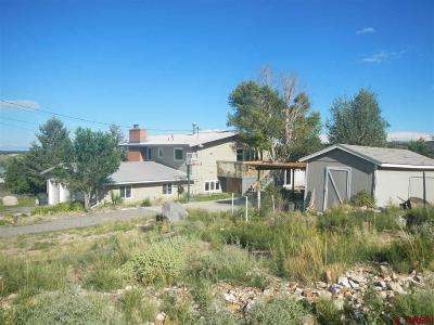 Del Norte Single Family Home For Sale: 1245 French