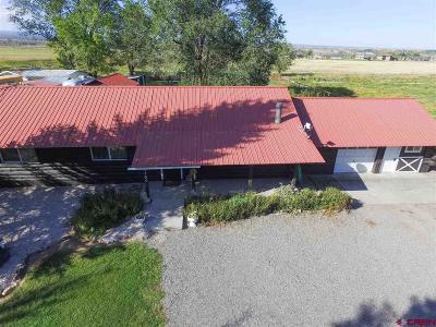 Montrose Single Family Home For Sale: 17105 Chipeta