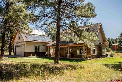 Pagosa Springs Single Family Home For Sale: 84 Teakwood