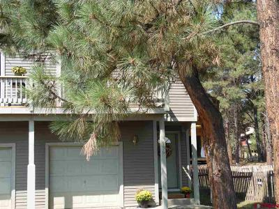 Pagosa Springs Single Family Home For Sale: 930 Cloud Cap