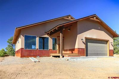 Pagosa Springs Single Family Home For Sale: 43 Simi Court