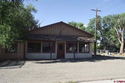Commercial For Sale: 315 W 5th Street