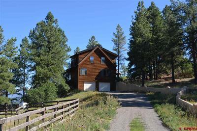 Pagosa Springs Single Family Home For Sale: 485 Kinnikinnik