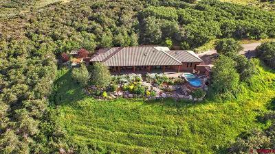 Montrose Single Family Home For Sale: 75235 E Portal
