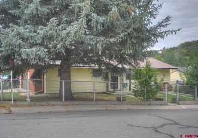 Durango CO Single Family Home For Sale: $450,000