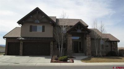 Montrose Single Family Home For Sale: 2432 Bear Lake