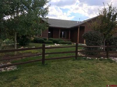 Pagosa Springs Single Family Home For Sale: 2013 Antelope